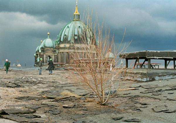 Ulrike Mohr: Aktion Restgrün