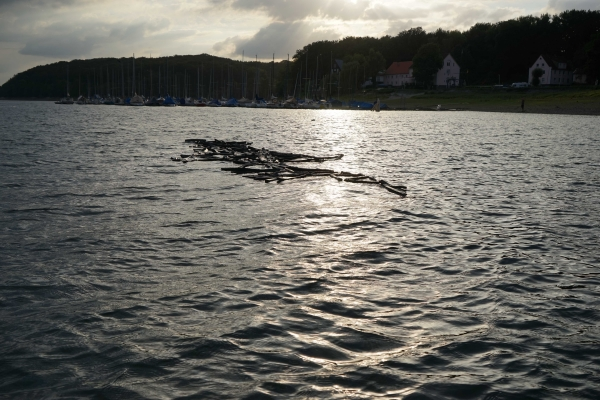 Ulrike Mohr: Wasserzeichnung